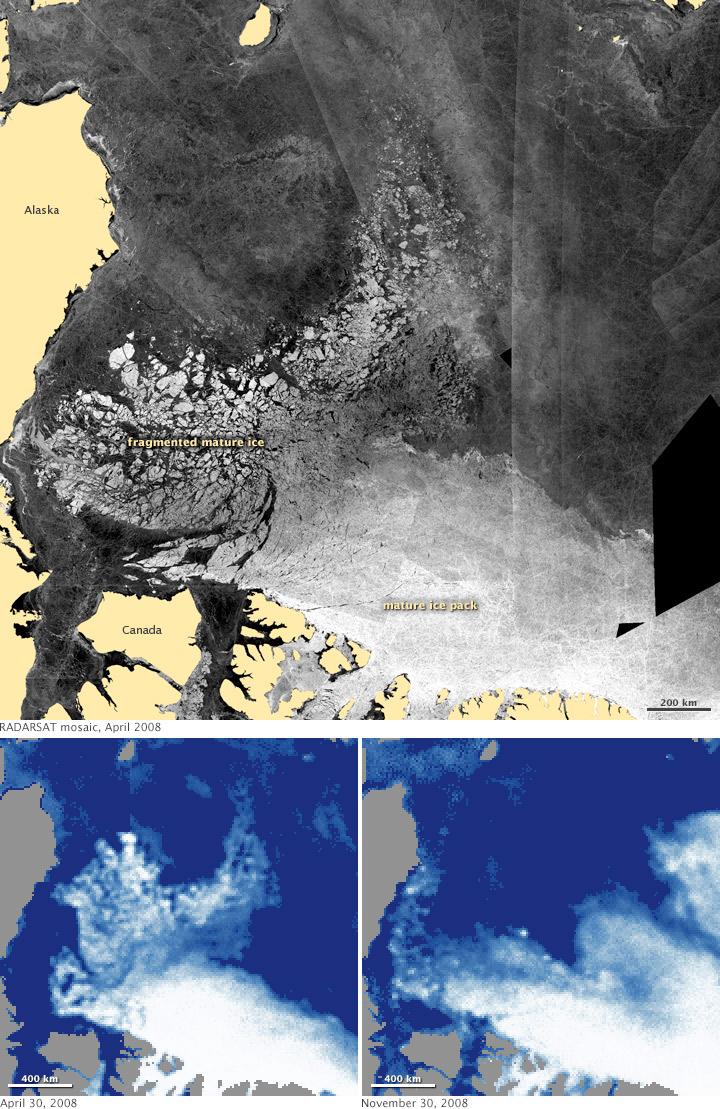 Es Artartika sudah mencair 32% sejak tahun 1993